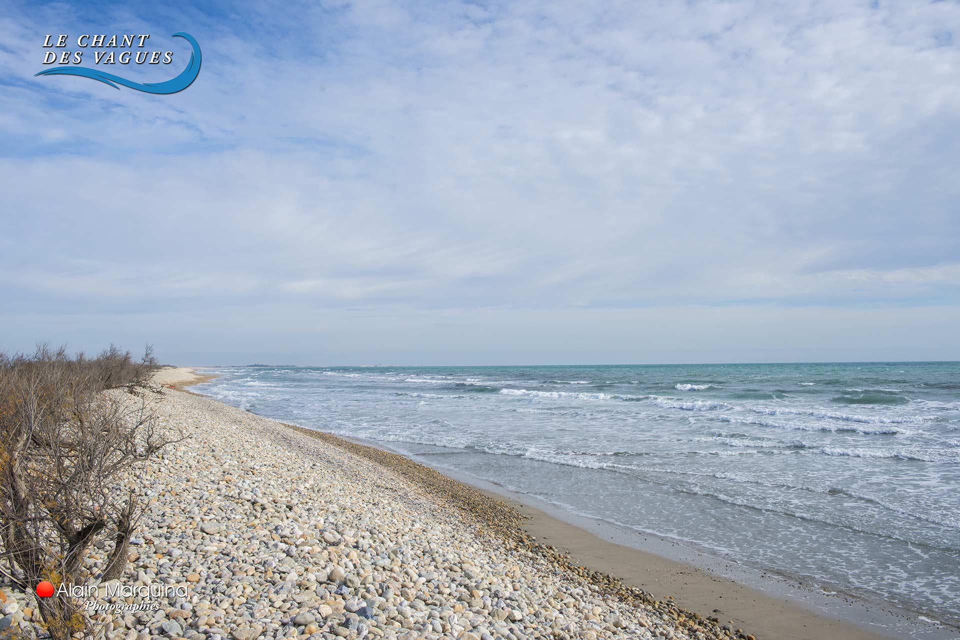 plage-sauvage-aresquiers-frontignan-plage